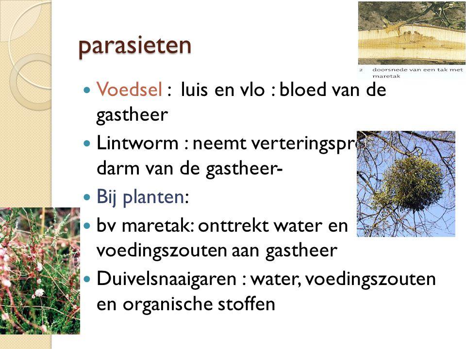 parasieten Voedsel : luis en vlo : bloed van de gastheer Lintworm : neemt verteringsproducten uit darm van de gastheer- Bij planten: bv maretak: onttr