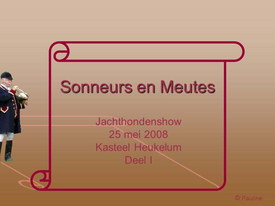 Sonneurs en Meutes Jachthondenshow 25 mei 2008 Kasteel Heukelum Deel I © Pauline