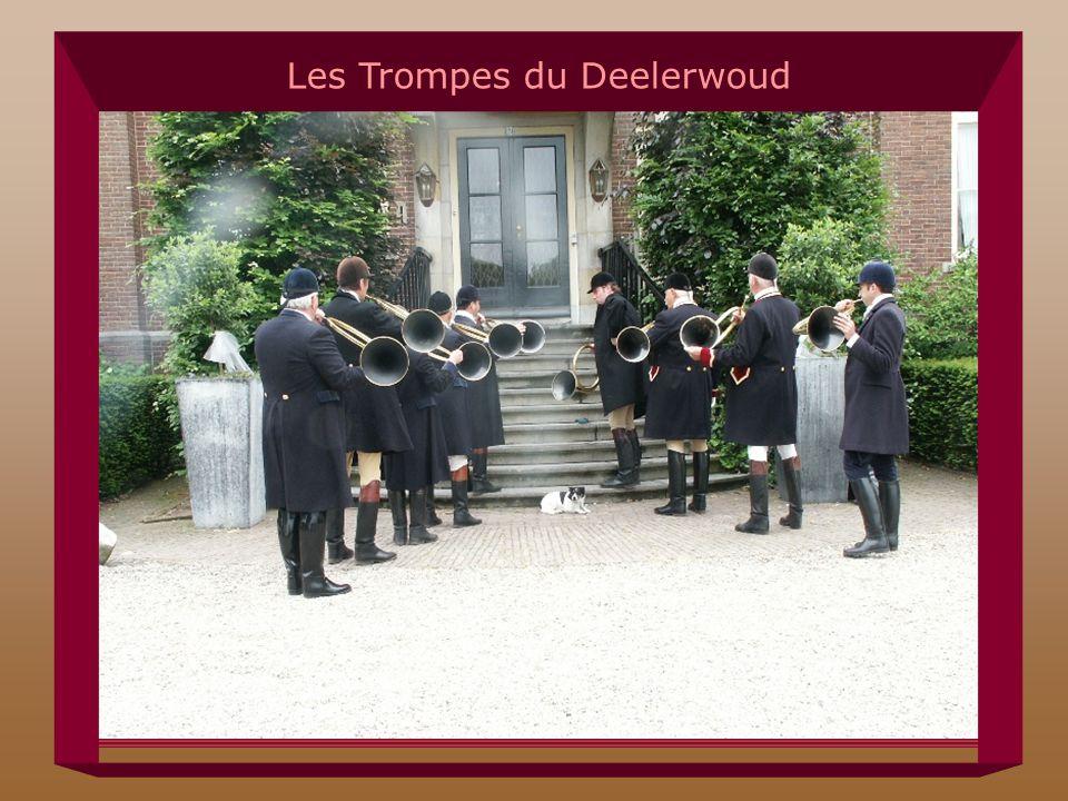 Les Trompes du Deelerwoud