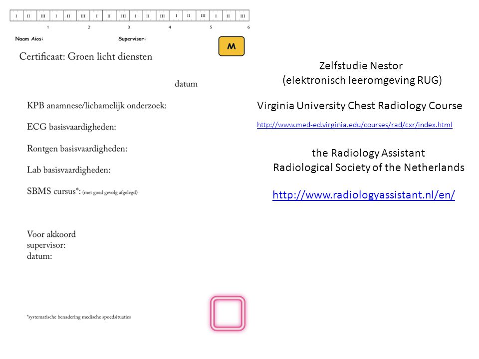 Zelfstudie Nestor (elektronisch leeromgeving RUG) http://www.med-ed.virginia.edu/courses/rad/cxr/index.html Virginia University Chest Radiology Course the Radiology Assistant Radiological Society of the Netherlands http://www.radiologyassistant.nl/en/