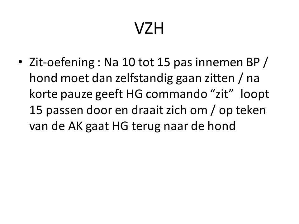 """VZH Zit-oefening : Na 10 tot 15 pas innemen BP / hond moet dan zelfstandig gaan zitten / na korte pauze geeft HG commando """"zit"""" loopt 15 passen door e"""