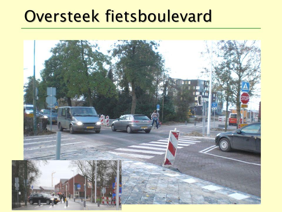 Oversteek fietsboulevard