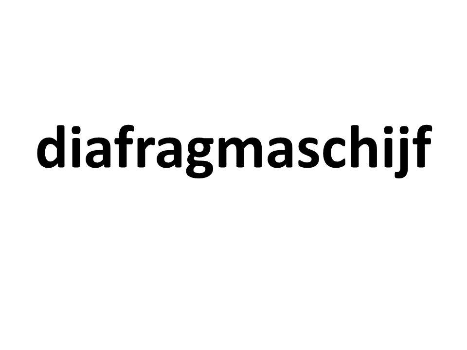 diafragmaschijf