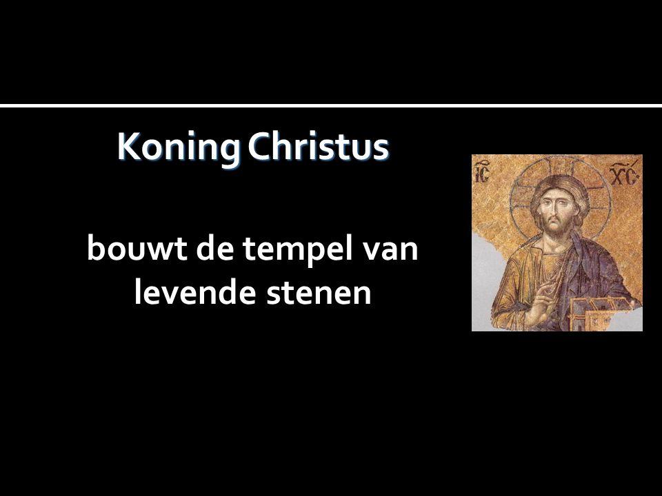 Koning Christus bouwt de tempel van levende stenen