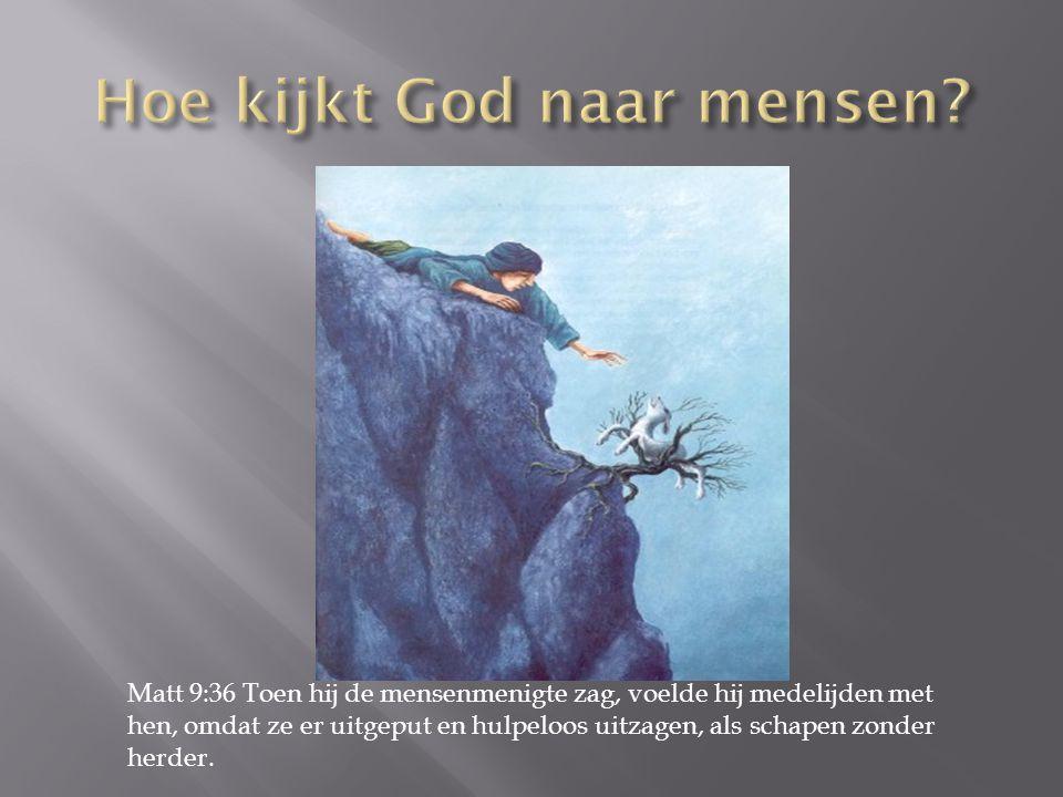 Matt 9:36 Toen hij de mensenmenigte zag, voelde hij medelijden met hen, omdat ze er uitgeput en hulpeloos uitzagen, als schapen zonder herder.