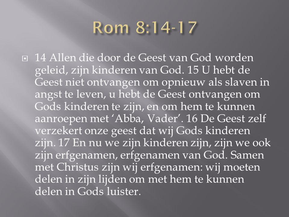  14 Allen die door de Geest van God worden geleid, zijn kinderen van God. 15 U hebt de Geest niet ontvangen om opnieuw als slaven in angst te leven,