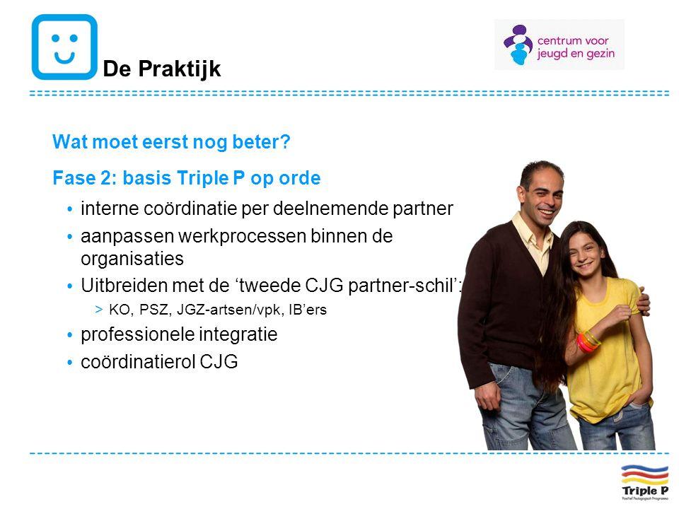 De Praktijk Wat moet eerst nog beter? Fase 2: basis Triple P op orde interne coördinatie per deelnemende partner aanpassen werkprocessen binnen de org