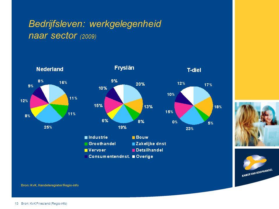 13 Bron: KvK Friesland (Regio-info) Bedrijfsleven: werkgelegenheid naar sector (2009) Bron: KvK, Handelsregister/Regio-info