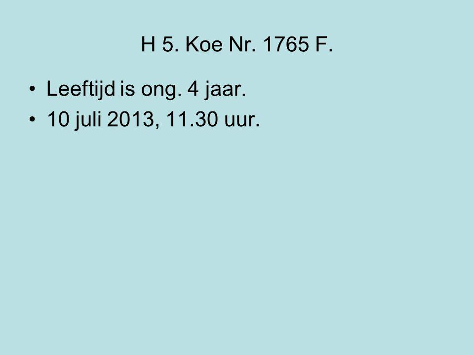 H 5. Koe Nr. 1765 F. Leeftijd is ong. 4 jaar. 10 juli 2013, 11.30 uur.