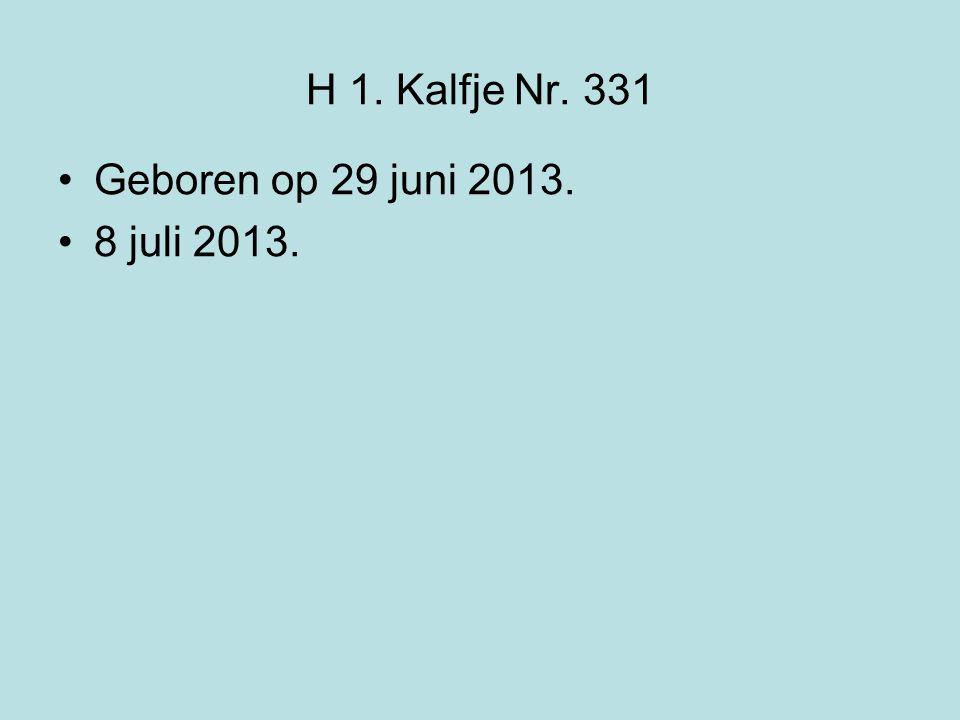 H 1. Kalfje Nr. 331 Geboren op 29 juni 2013. 8 juli 2013.