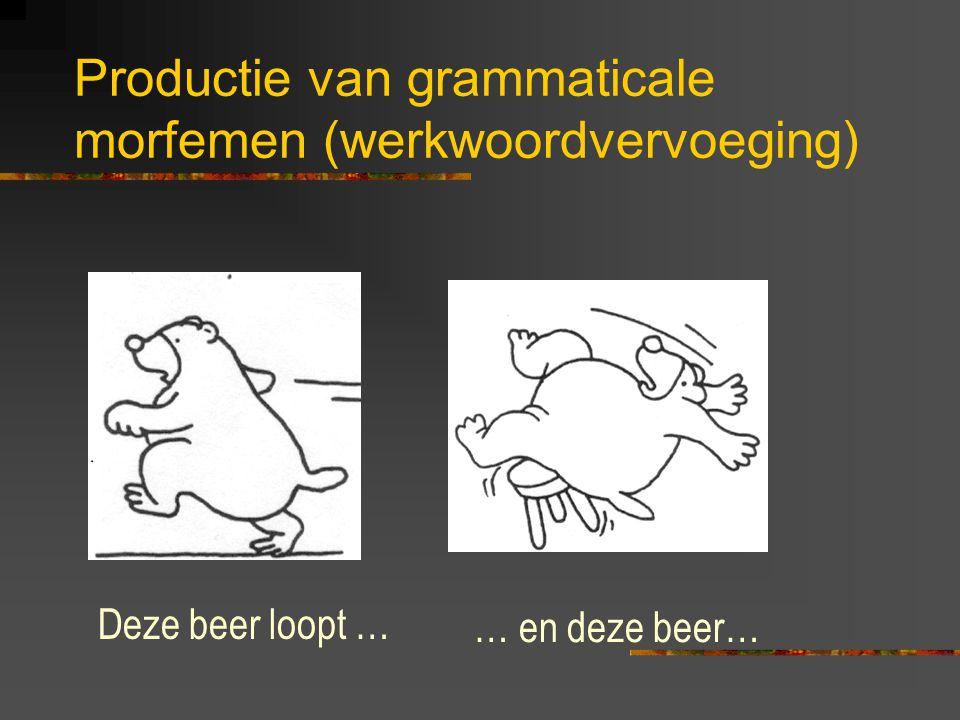 Productie van grammaticale morfemen (naamwoordverbuiging) Dit is één beer …… en dit zijn twee…