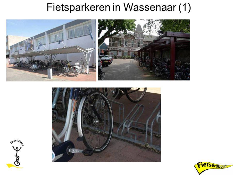 Fietsparkeren in Wassenaar (1)