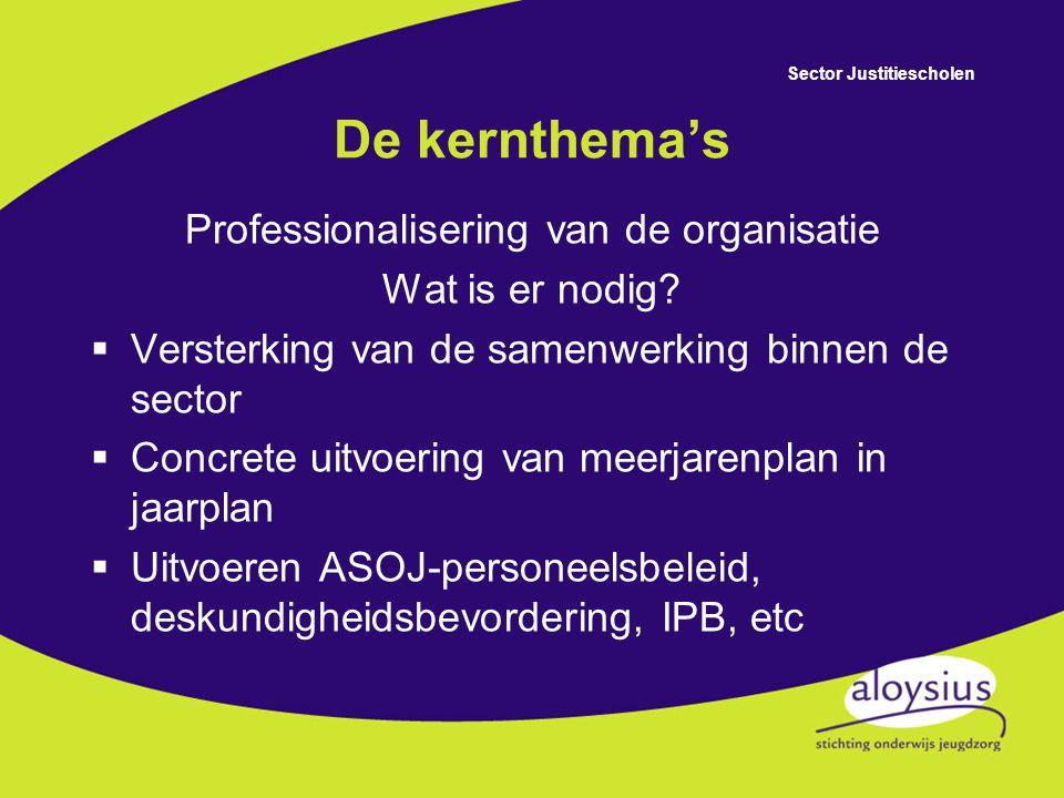 Sector Justitiescholen De kernthema's Professionalisering van de organisatie  Sturen op visie en resultaat  Verdere uitwerking van integraal management  Professionaliseren van het personeelsbeleid en het optimaliseren van de bedrijfsvoering