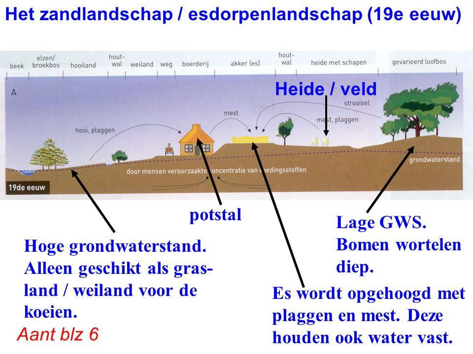 Het zandlandschap / esdorpenlandschap (19e eeuw) doorsnede potstal Hoge grondwaterstand. Alleen geschikt als gras- land / weiland voor de koeien. Lage