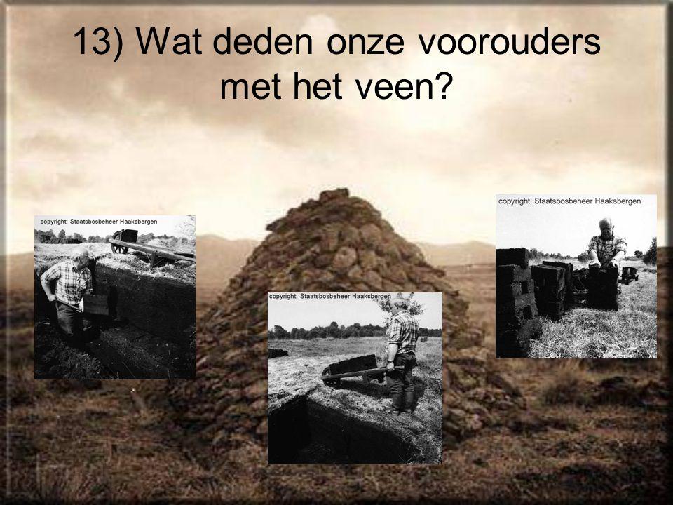 13) Wat deden onze voorouders met het veen?