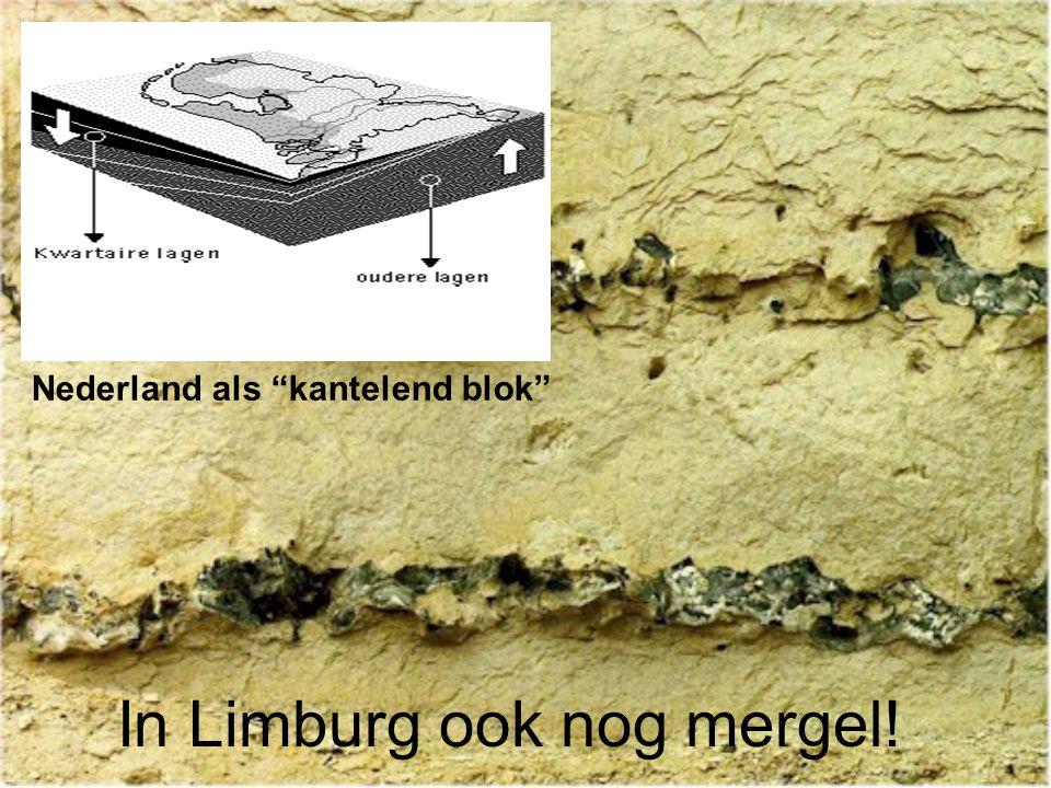 "In Limburg ook nog mergel! Nederland als ""kantelend blok"""