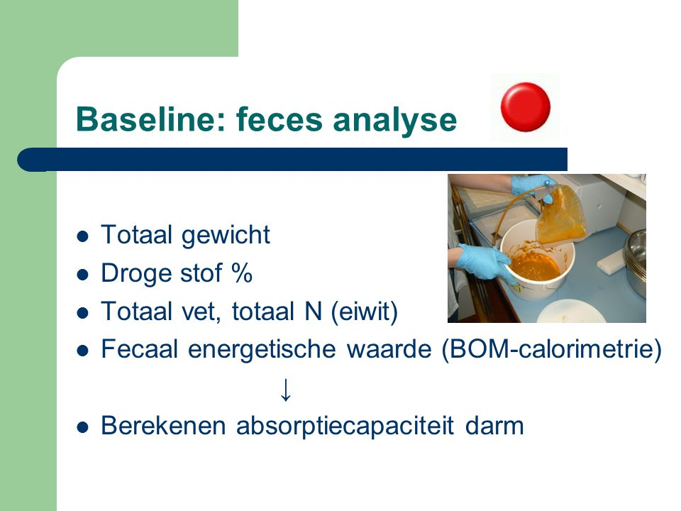 Baseline: feces analyse Totaal gewicht Droge stof % Totaal vet, totaal N (eiwit) Fecaal energetische waarde (BOM-calorimetrie) ↓ Berekenen absorptieca