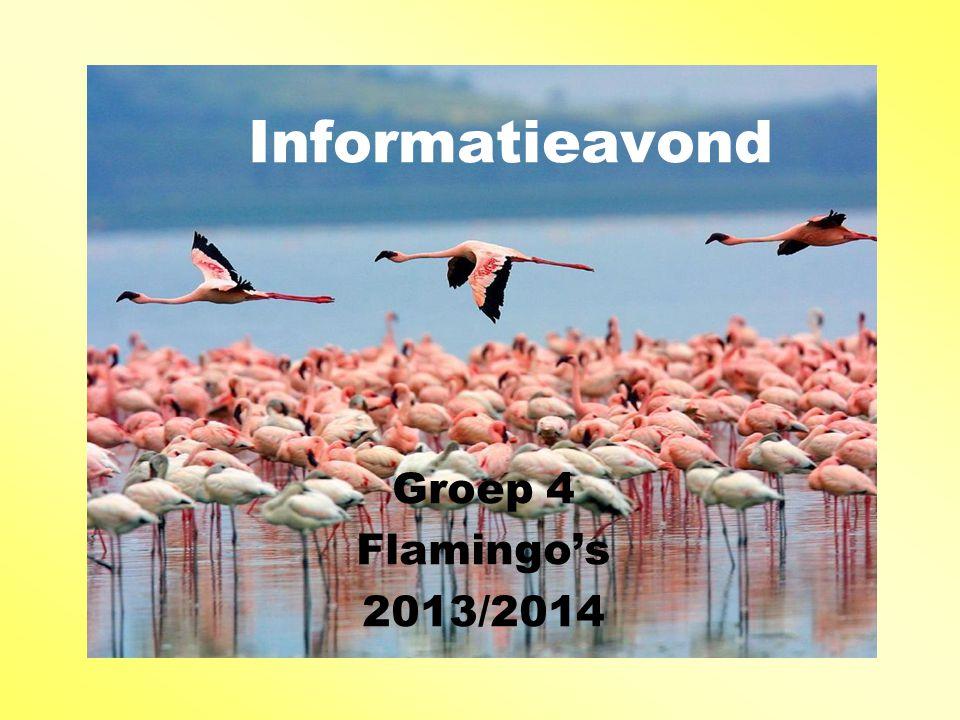 Informatieavond Groep 4 Flamingo's 2013/2014