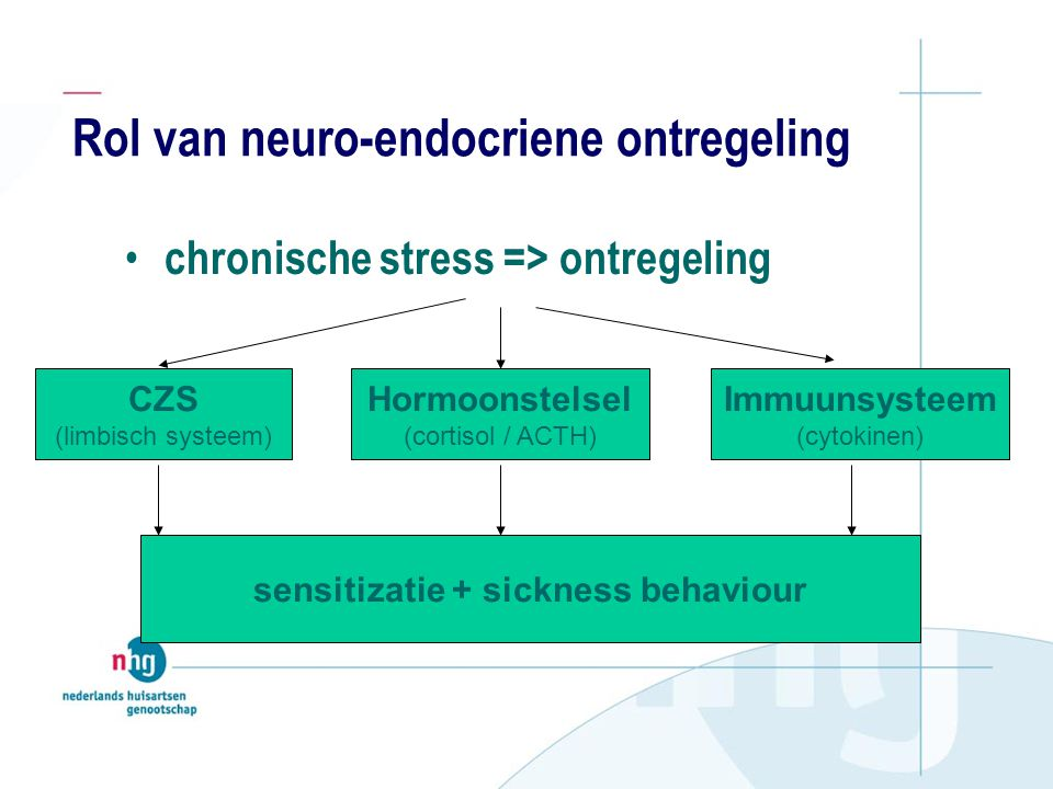 Rol van neuro-endocriene ontregeling chronische stress => ontregeling CZS (limbisch systeem) Hormoonstelsel (cortisol / ACTH) Immuunsysteem (cytokinen) sensitizatie + sickness behaviour