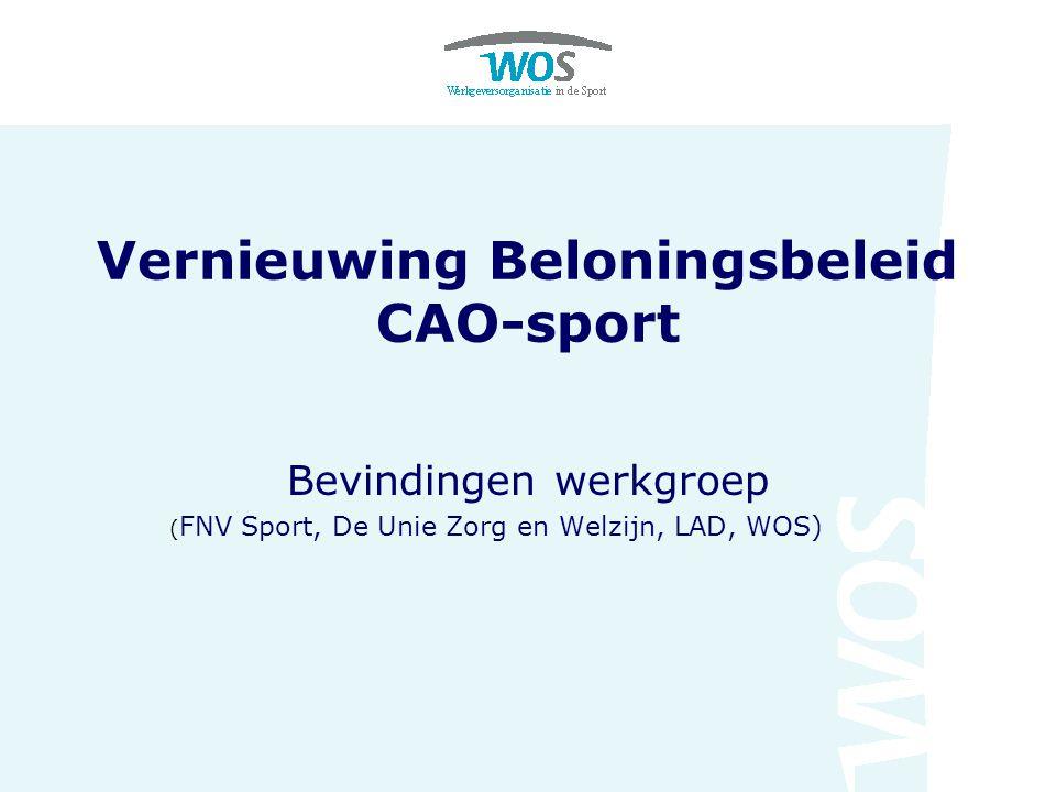 Omkadering werkgroep  Studie naar vernieuwing beloningsbeleid CAO- Sport;  Dispensatieverzoeken NOC*NSF en KNVB;  Doel: tot afspraken komen ten behoeve van de nieuwe CAO-Sport per 1 juni 2009.
