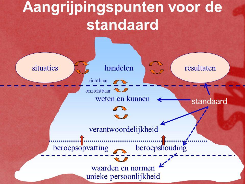 Aangrijpingspunten voor de standaard situatiesresultaten handelen zichtbaar onzichtbaar unieke persoonlijkheid waarden en normen beroepsopvatting bero