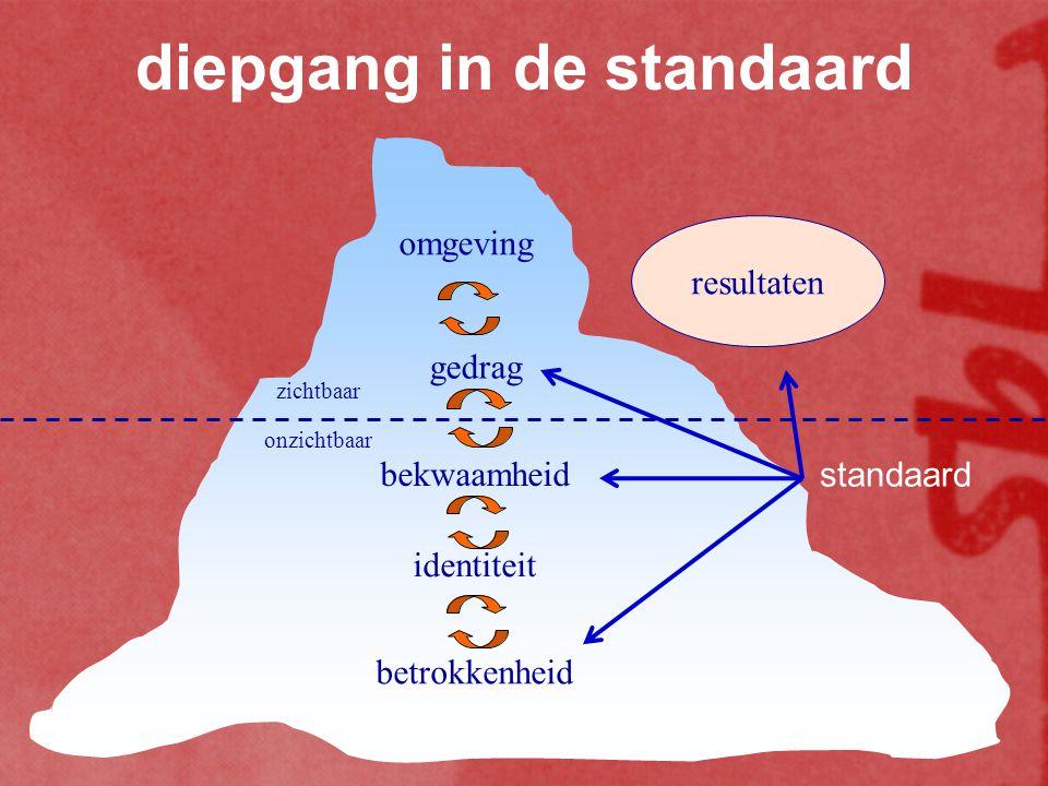 diepgang in de standaard omgeving gedrag bekwaamheid identiteit betrokkenheid zichtbaar onzichtbaar standaard resultaten