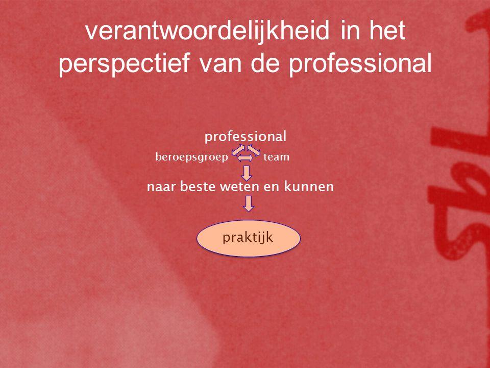 praktijk professional beroepsgroepteam naar beste weten en kunnen verantwoordelijkheid in het perspectief van de professional
