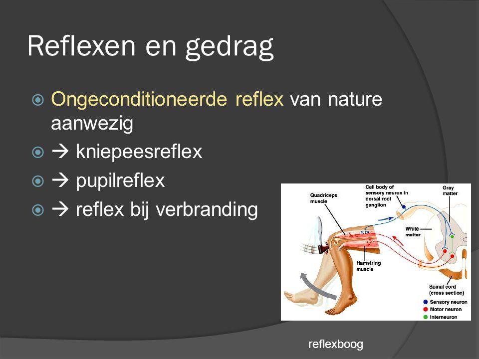 Reflexen en gedrag  Ongeconditioneerde reflex van nature aanwezig   kniepeesreflex   pupilreflex   reflex bij verbranding reflexboog