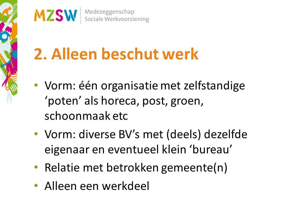 2. Alleen beschut werk Vorm: één organisatie met zelfstandige 'poten' als horeca, post, groen, schoonmaak etc Vorm: diverse BV's met (deels) dezelfde