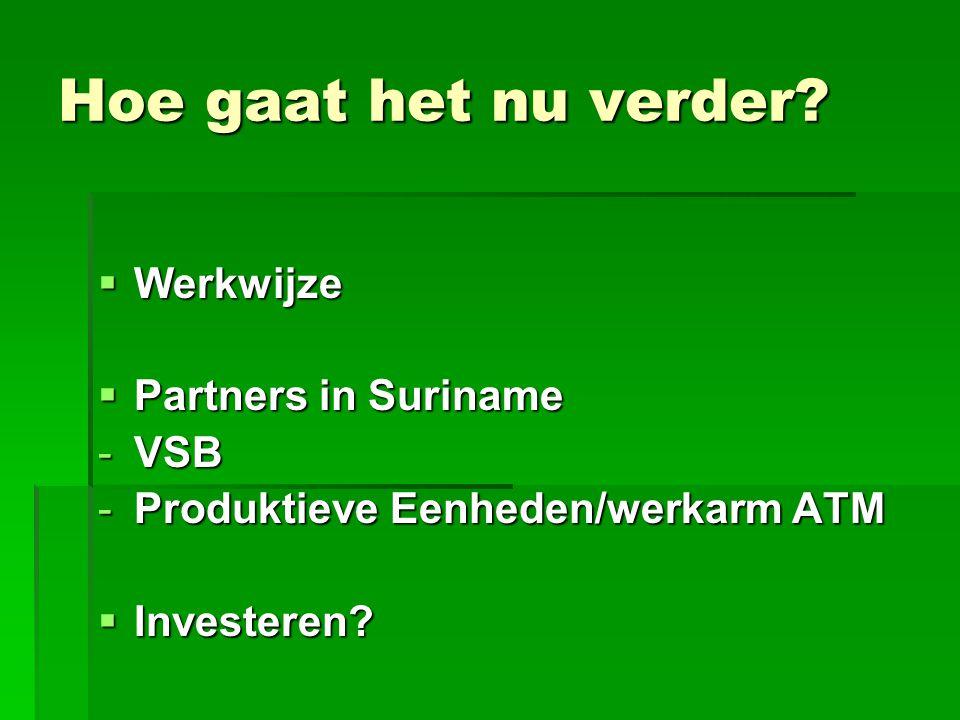Hoe gaat het nu verder?  Werkwijze  Partners in Suriname -VSB -Produktieve Eenheden/werkarm ATM  Investeren?