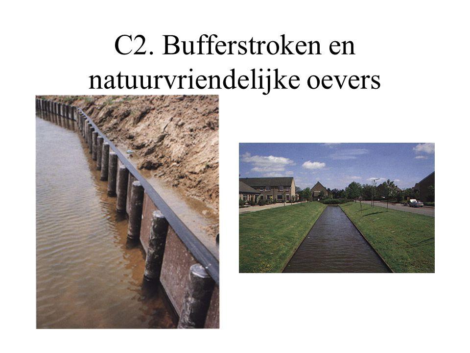 C2. Bufferstroken en natuurvriendelijke oevers