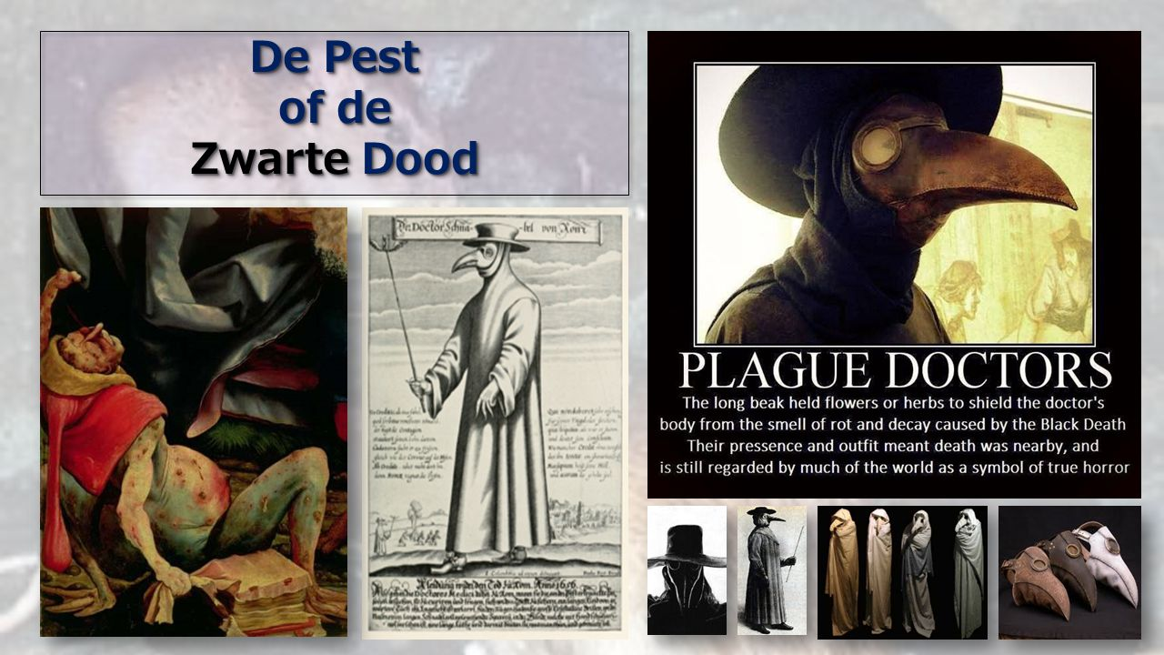De Pest of de Zwarte Dood De Pest of de Zwarte Dood