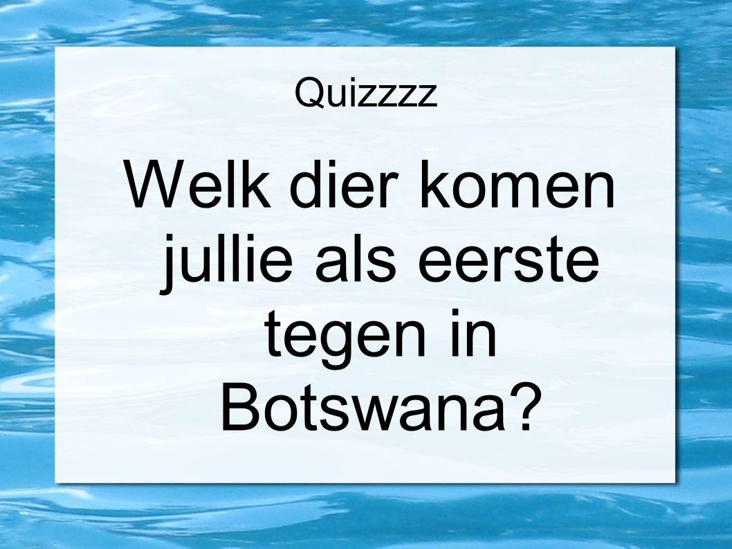Quizzzz Welk dier komen jullie als eerste tegen in Botswana