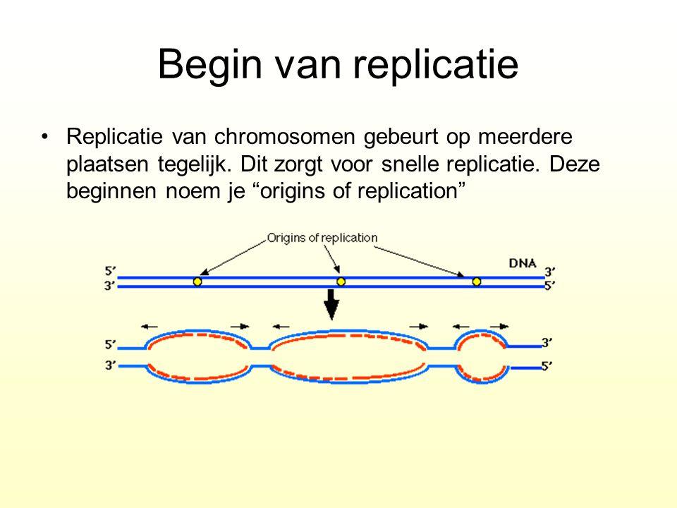 """Begin van replicatie Replicatie van chromosomen gebeurt op meerdere plaatsen tegelijk. Dit zorgt voor snelle replicatie. Deze beginnen noem je """"origin"""