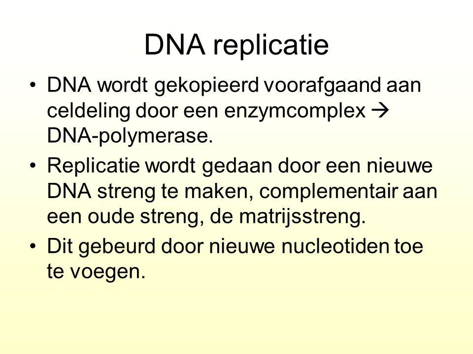 DNA replicatie DNA wordt gekopieerd voorafgaand aan celdeling door een enzymcomplex  DNA-polymerase. Replicatie wordt gedaan door een nieuwe DNA stre