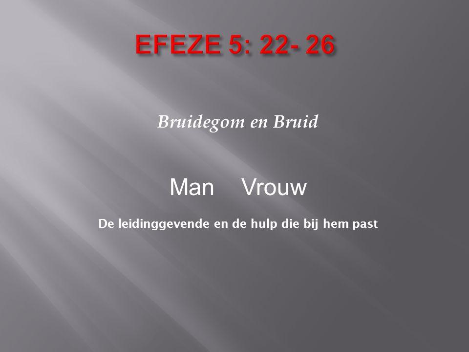 Bruidegom en Bruid Man Vrouw De leidinggevende en de hulp die bij hem past