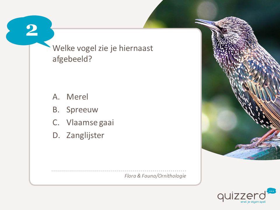 2 Welke vogel zie je hiernaast afgebeeld? A.Merel B.Spreeuw C.Vlaamse gaai D.Zanglijster Flora & Fauna/Ornithologie