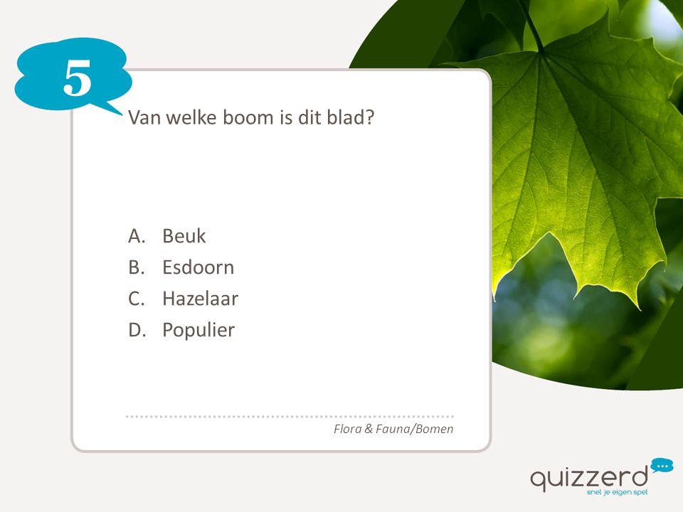 5 Van welke boom is dit blad? A.Beuk B.Esdoorn C.Hazelaar D.Populier Flora & Fauna/Bomen