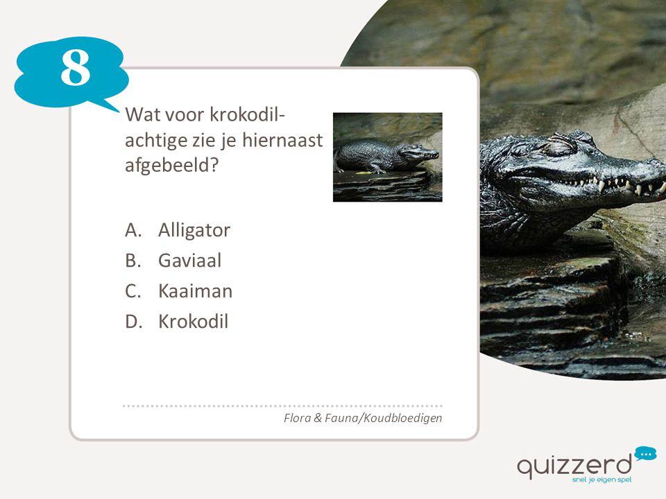 8 Wat voor krokodil- achtige zie je hiernaast afgebeeld? A.Alligator B.Gaviaal C.Kaaiman D.Krokodil Flora & Fauna/Koudbloedigen