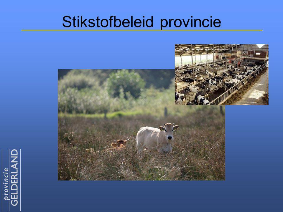 Stikstofbeleid provincie