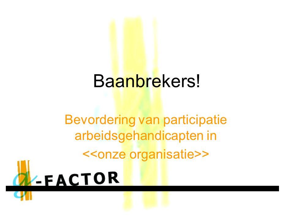 Baanbrekers! Bevordering van participatie arbeidsgehandicapten in >