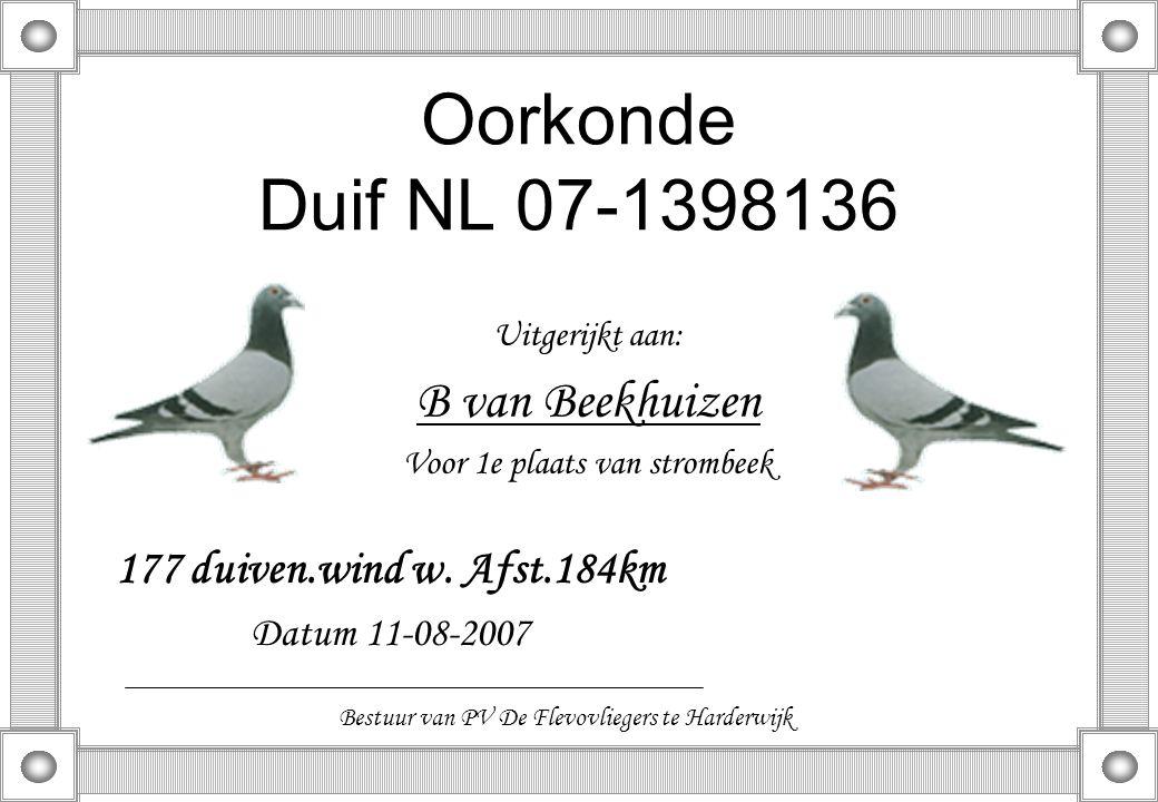Oorkonde Duif NL 07-1398136 Uitgerijkt aan: B van Beekhuizen Voor 1e plaats van strombeek 177 duiven.wind w. Afst.184km Datum 11-08-2007 Bestuur van P