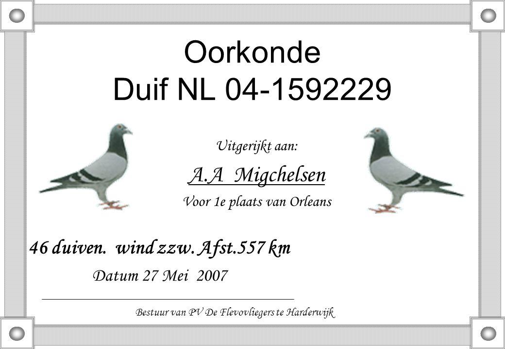 Oorkonde Duif NL 04-1592229 Uitgerijkt aan: A.A Migchelsen Voor 1e plaats van Orleans 46 duiven. wind zzw. Afst.557 km Datum 27 Mei 2007 Bestuur van P