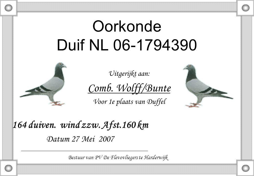 Oorkonde Duif NL 06-1794390 Uitgerijkt aan: Comb. Wolff/Bunte Voor 1e plaats van Duffel 164 duiven. wind zzw. Afst.160 km Datum 27 Mei 2007 Bestuur va