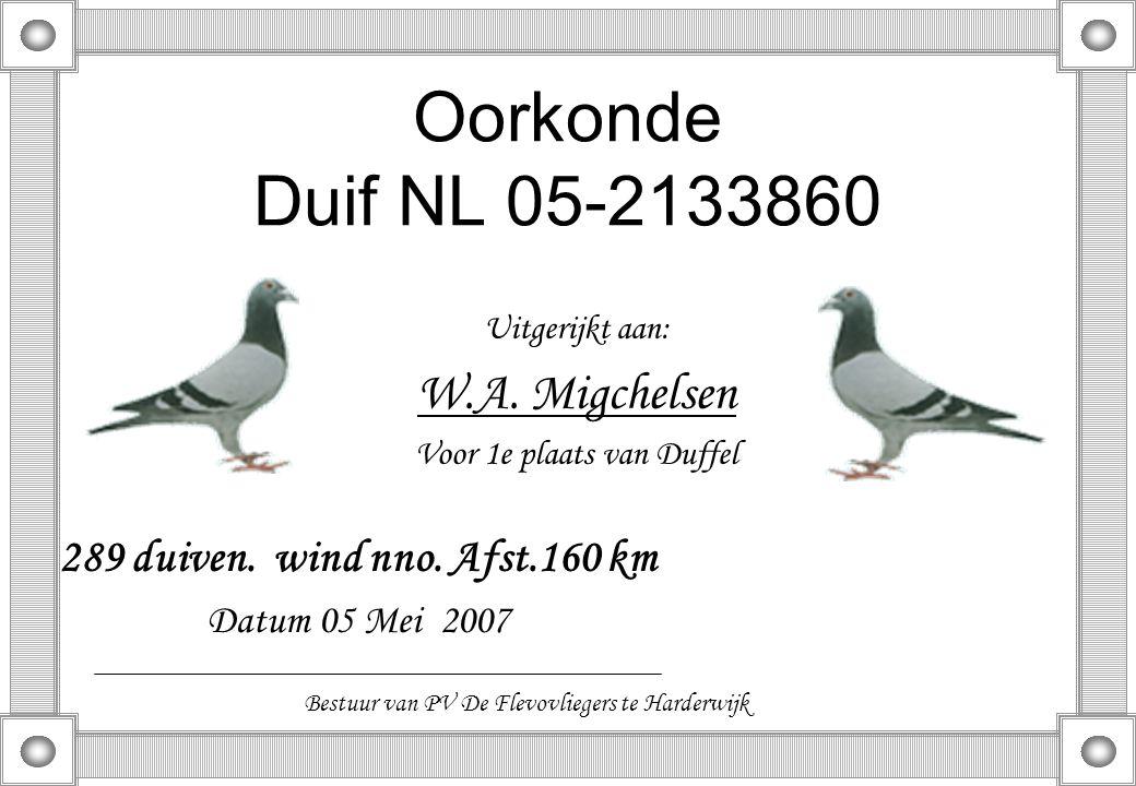 Oorkonde Duif NL 05-2133860 Uitgerijkt aan: W.A. Migchelsen Voor 1e plaats van Duffel 289 duiven. wind nno. Afst.160 km Datum 05 Mei 2007 Bestuur van