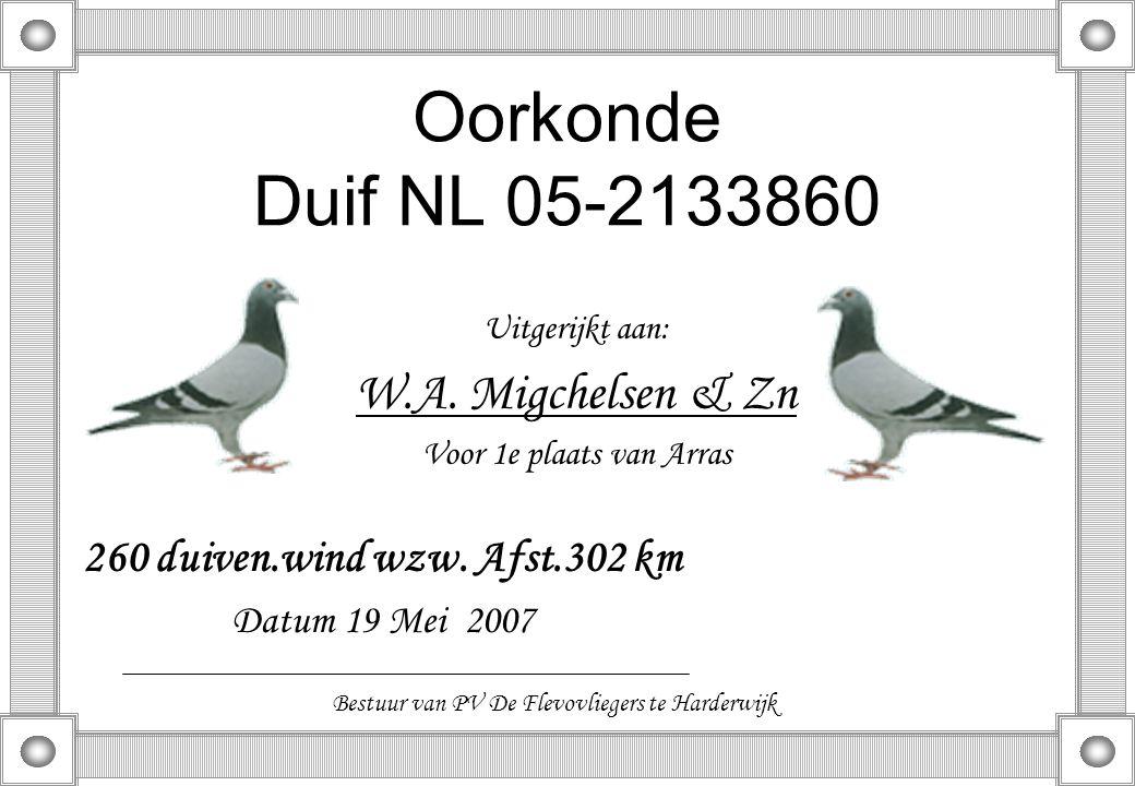Oorkonde Duif NL 05-2133860 Uitgerijkt aan: W.A. Migchelsen & Zn Voor 1e plaats van Arras 260 duiven.wind wzw. Afst.302 km Datum 19 Mei 2007 Bestuur v
