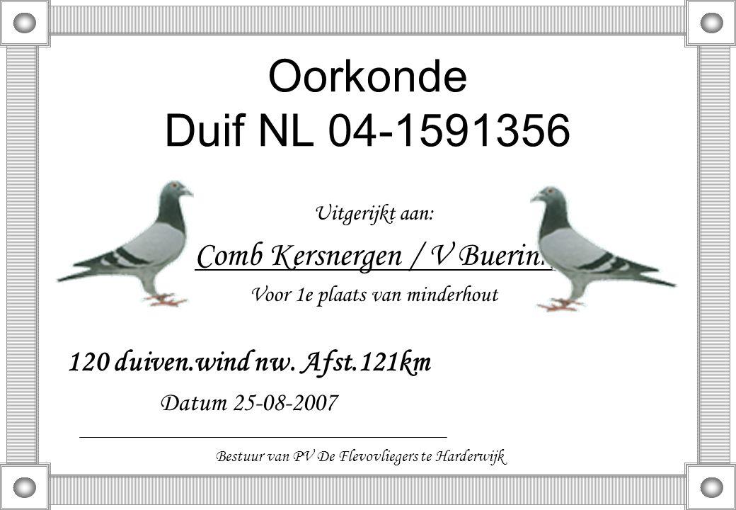 Oorkonde Duif NL 04-1591356 Uitgerijkt aan: Comb Kersnergen / V Buerink Voor 1e plaats van minderhout 120 duiven.wind nw. Afst.121km Datum 25-08-2007