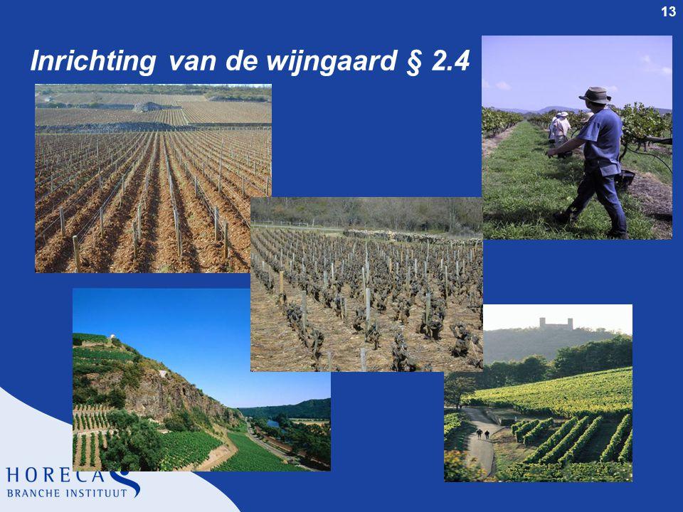 13 Inrichting van de wijngaard § 2.4