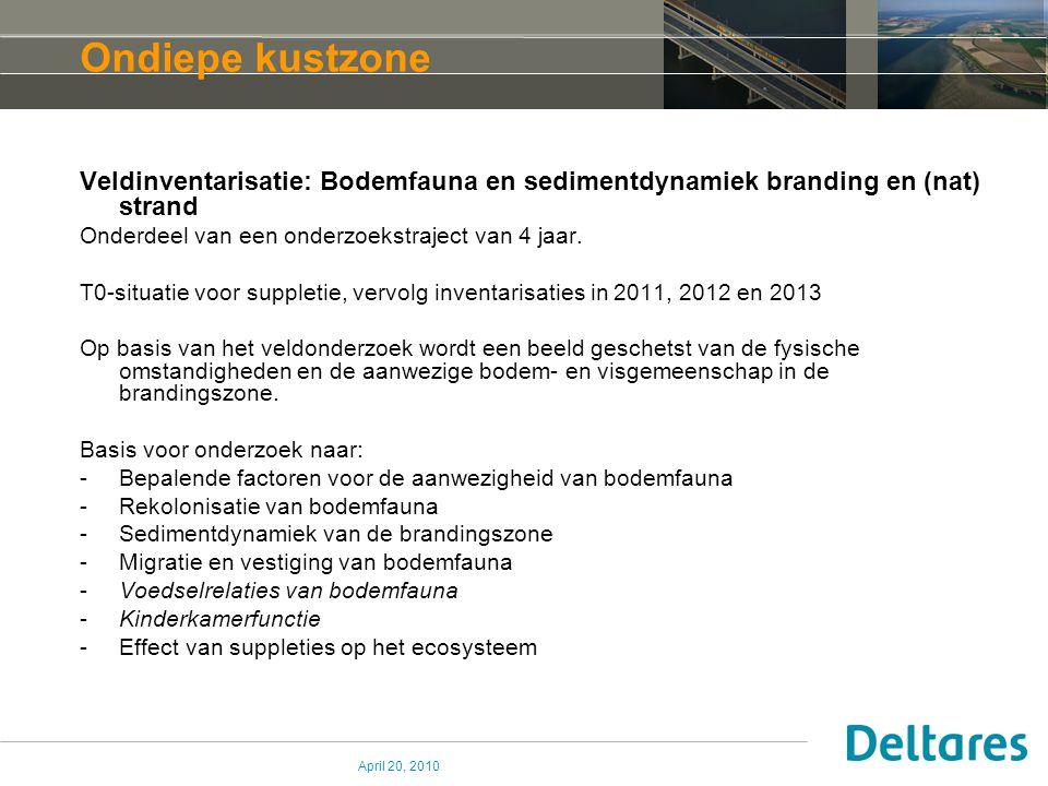 April 20, 2010 Ondiepe kustzone Veldinventarisatie: Bodemfauna en sedimentdynamiek branding en (nat) strand Onderdeel van een onderzoekstraject van 4 jaar.