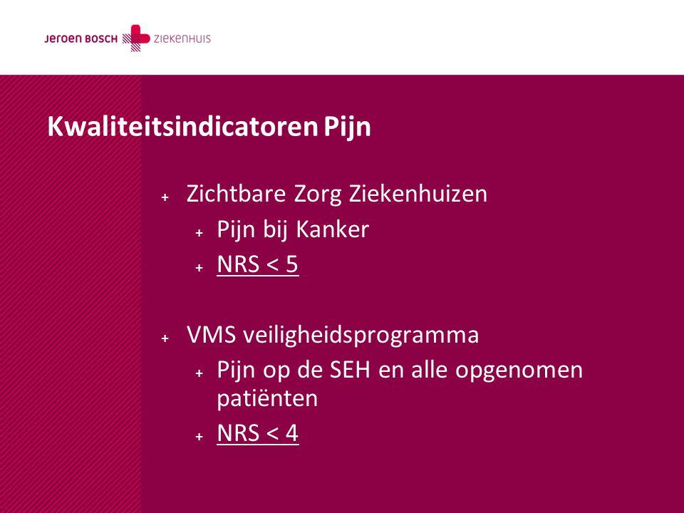 Kwaliteitsindicatoren Pijn + Zichtbare Zorg Ziekenhuizen + Pijn bij Kanker + NRS < 5 + VMS veiligheidsprogramma + Pijn op de SEH en alle opgenomen pat